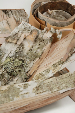 Birch Bark strips are available by the box or by the sheet.  $7.99 to $75.00